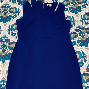 Royal Blue Calvin Klein DRESS, NWT